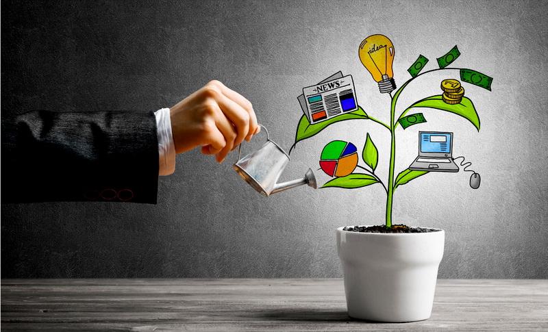 Финансовые решения, принимаемые при запуске бизнеса